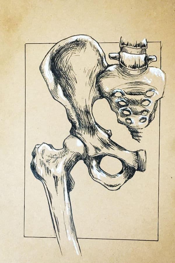 bolna leđa
